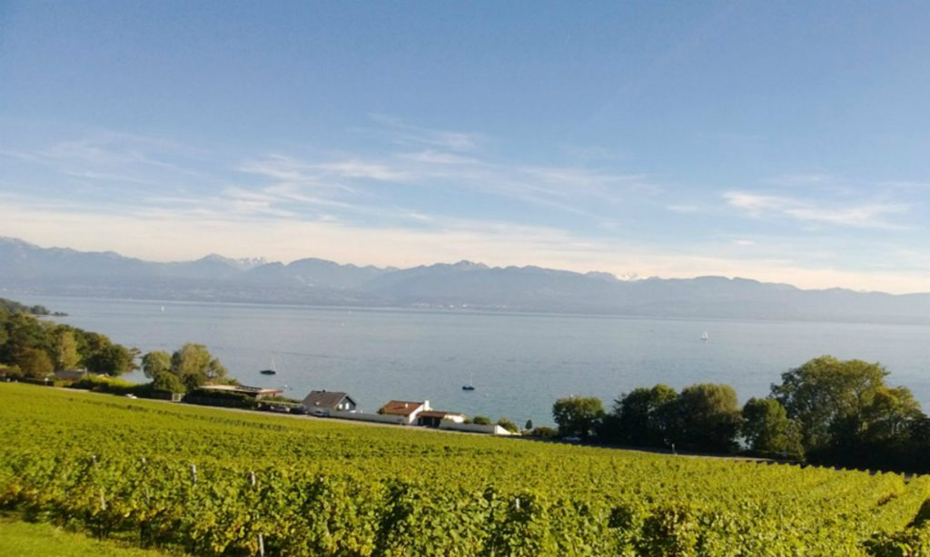 Blick ueber Genfer See bei Nyon