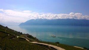 Lavaux Blick auf den Genfer See, einer Gegend, die auch steuerlich attraktiv ist - OBENHAUS Anwaltskanzlei für Steuerrecht in Zürich berät Sie dazu.